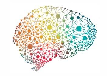 Corso Neuroscienze